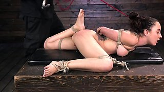 BDSM session with a brown haired porn darling