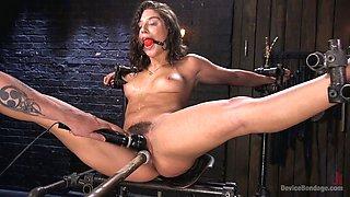 Bondage hooker Abella Danger gets her body and pussy punished